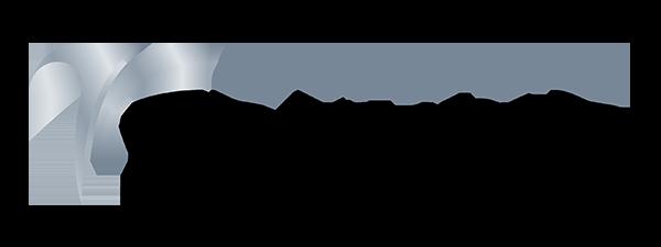 https://www.dealerhub.com.br/wp-content/uploads/2020/11/Logo-Grupo-Treviso-FINAL_site.png